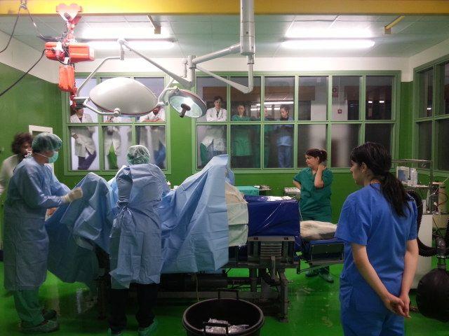 Servicio Cirugía Grandes